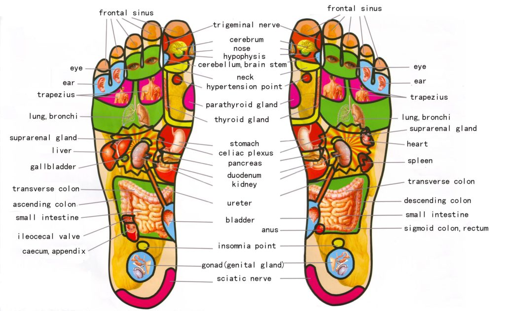 Foot acupressure point chart